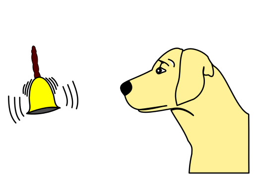 Principles Of Classical Conditioning Psychestudy