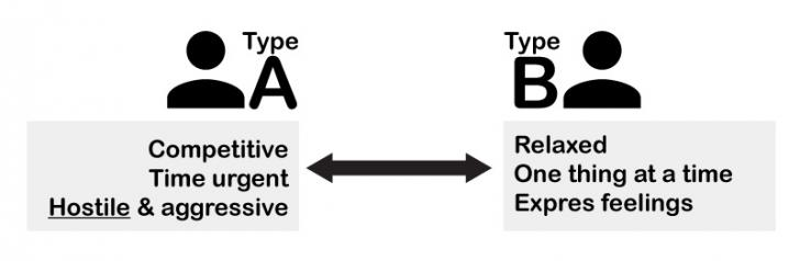type a and b personality essay 'type a' and 'type b' are different personality types, with 'type a' reputedly being more susceptible to heart attacks.